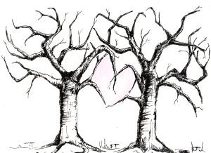 svatební stromy, Pavlína Jurasová